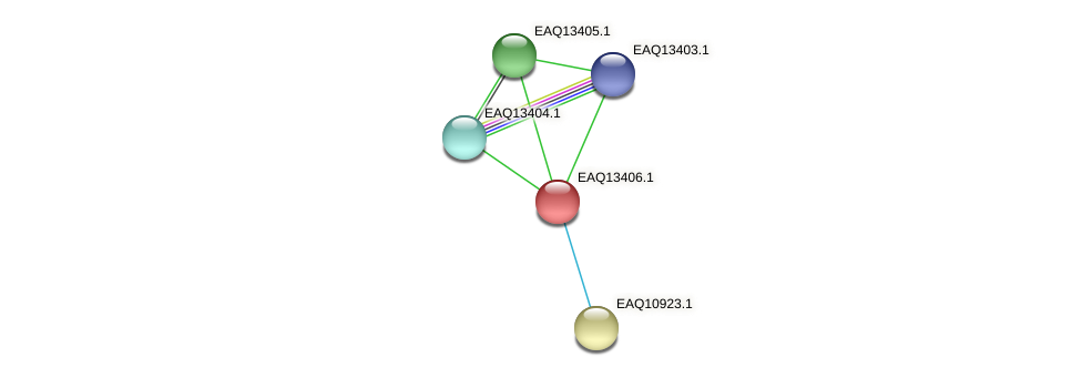 RB2654_10059 protein (Maritimibacter alkaliphilus) - STRING interaction network