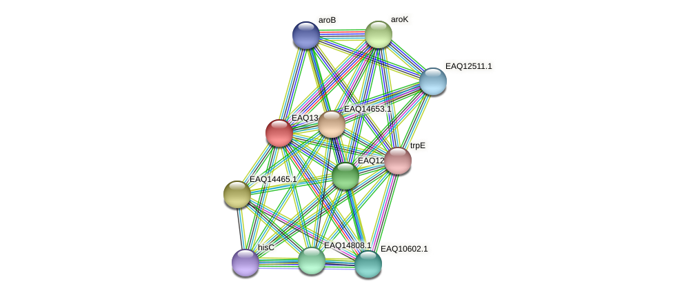 RB2654_10094 protein (Maritimibacter alkaliphilus) - STRING interaction network