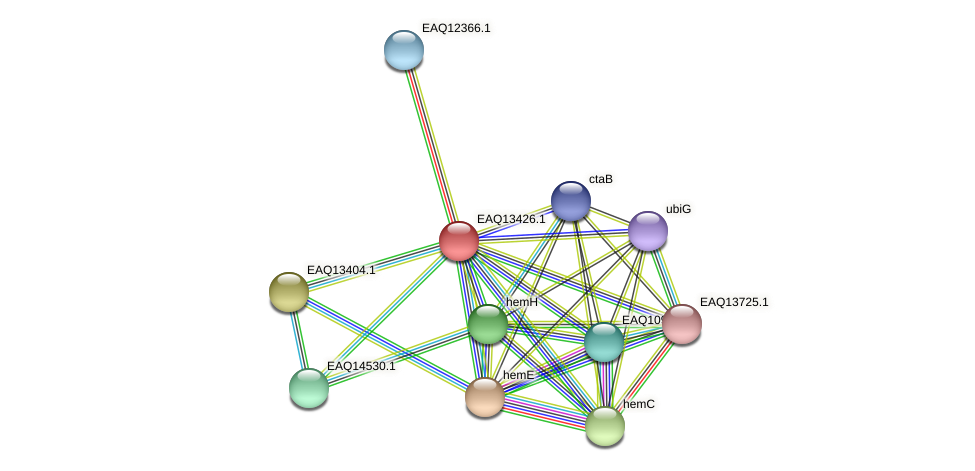 RB2654_10159 protein (Maritimibacter alkaliphilus) - STRING interaction network