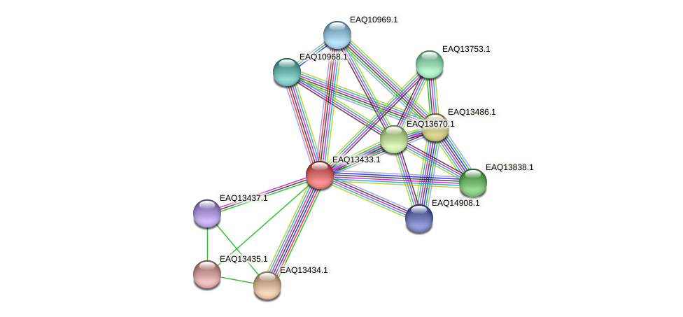 RB2654_10194 protein (Maritimibacter alkaliphilus) - STRING interaction network