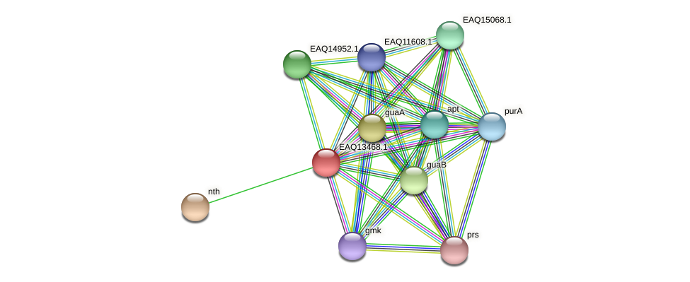 RB2654_10369 protein (Maritimibacter alkaliphilus) - STRING interaction network