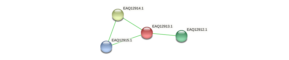 RB2654_10463 protein (Maritimibacter alkaliphilus) - STRING interaction network