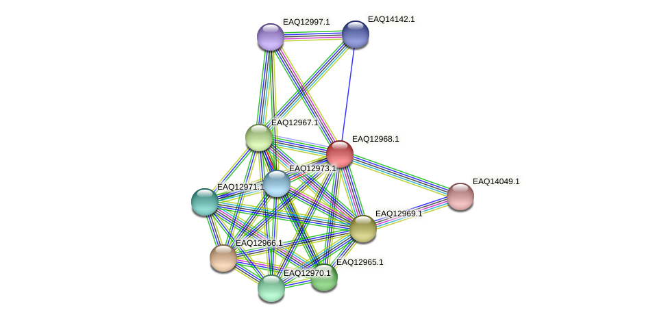 RB2654_10738 protein (Maritimibacter alkaliphilus) - STRING interaction network