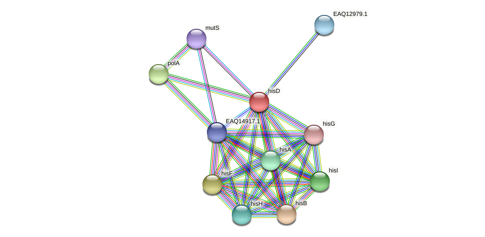 RB2654_10788 protein (Maritimibacter alkaliphilus) - STRING interaction network