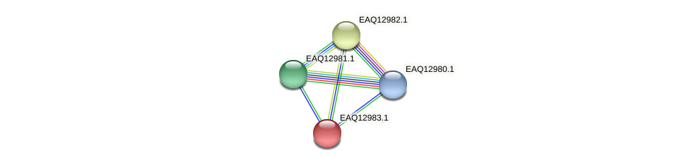 RB2654_10813 protein (Maritimibacter alkaliphilus) - STRING interaction network