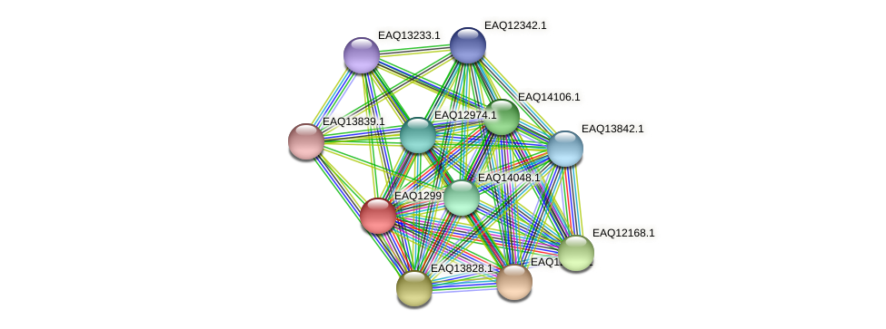 RB2654_10883 protein (Maritimibacter alkaliphilus) - STRING interaction network