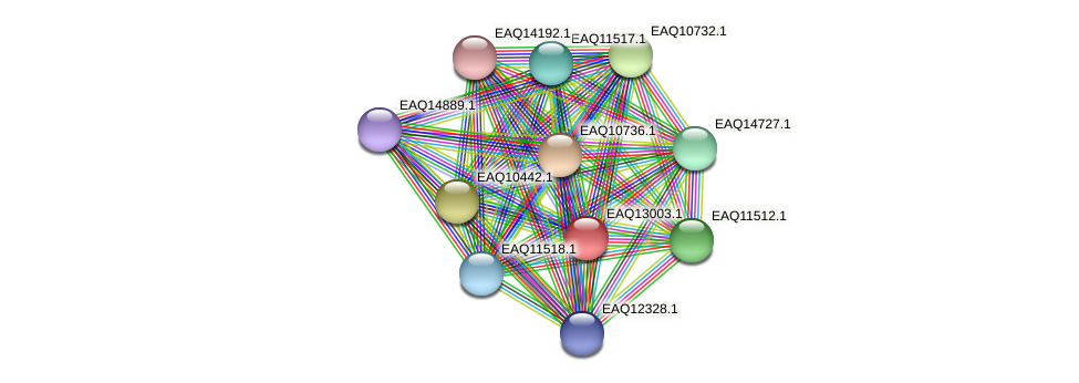 RB2654_10913 protein (Maritimibacter alkaliphilus) - STRING interaction network