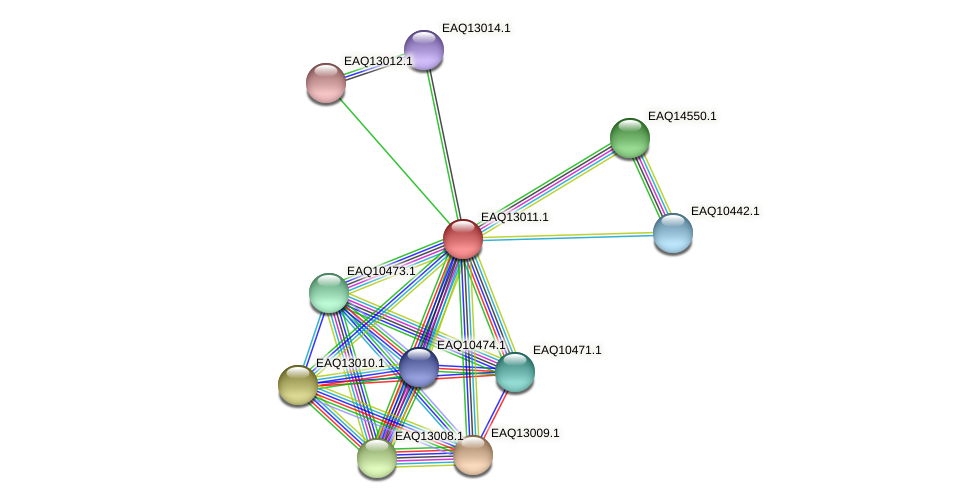 RB2654_10953 protein (Maritimibacter alkaliphilus) - STRING interaction network