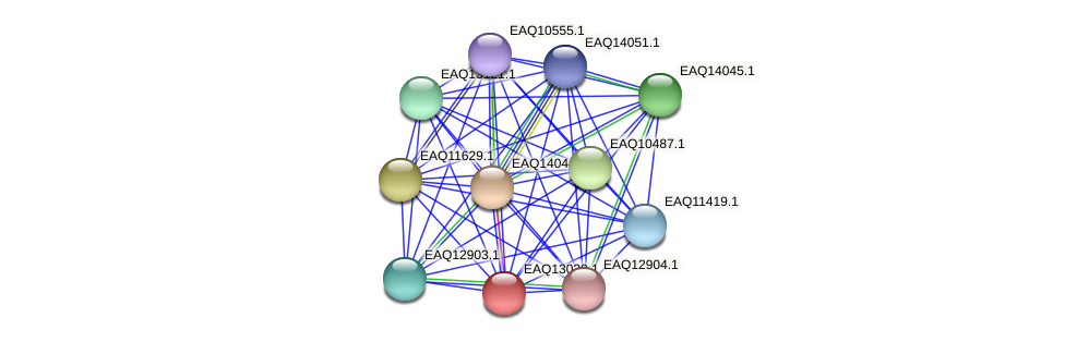 RB2654_11048 protein (Maritimibacter alkaliphilus) - STRING interaction network