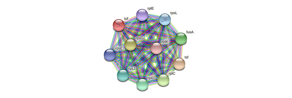 RB2654_11238 protein (Maritimibacter alkaliphilus) - STRING interaction network
