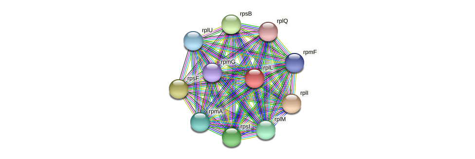 rplL protein (Maritimibacter alkaliphilus) - STRING interaction network