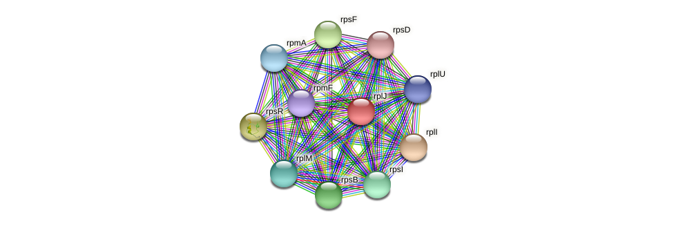 rplJ protein (Maritimibacter alkaliphilus) - STRING interaction network