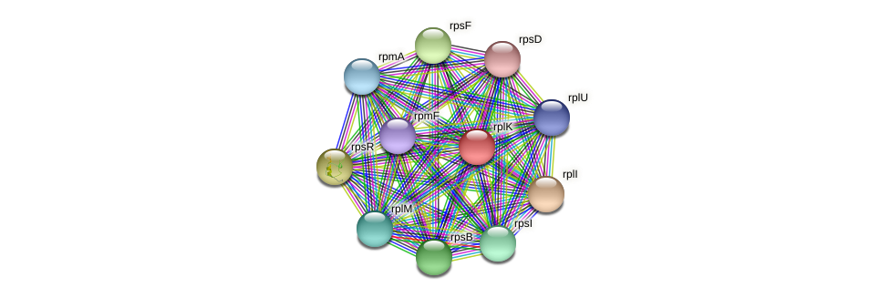 rplK protein (Maritimibacter alkaliphilus) - STRING interaction network
