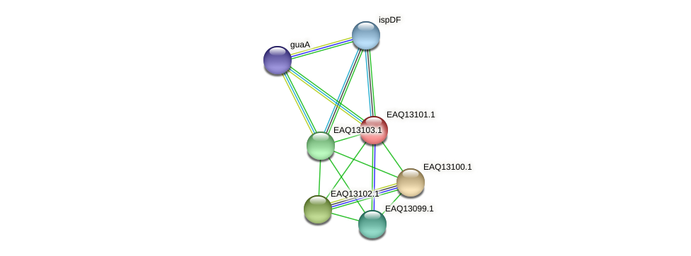RB2654_11403 protein (Maritimibacter alkaliphilus) - STRING interaction network