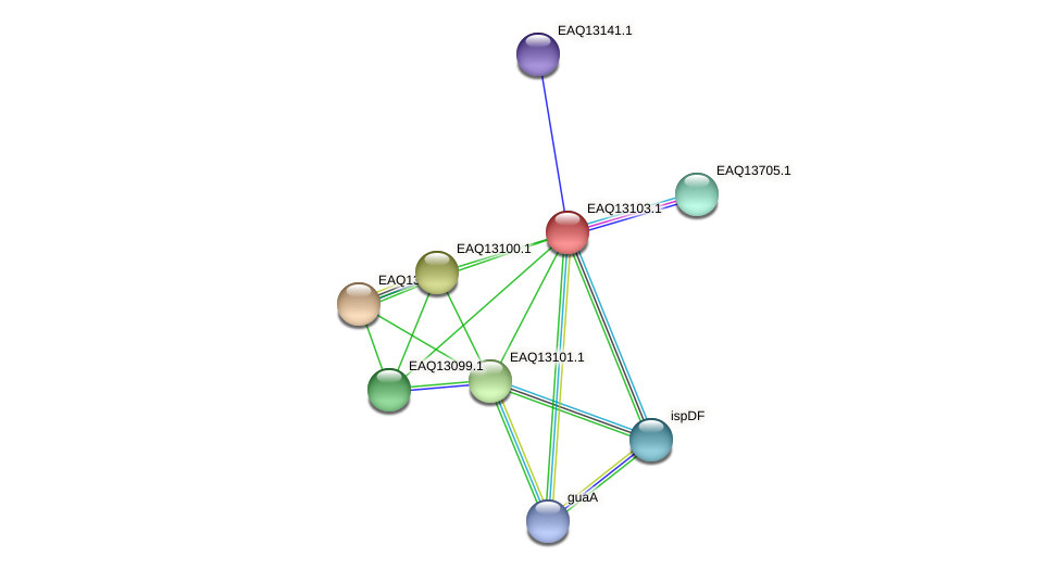 RB2654_11413 protein (Maritimibacter alkaliphilus) - STRING interaction network