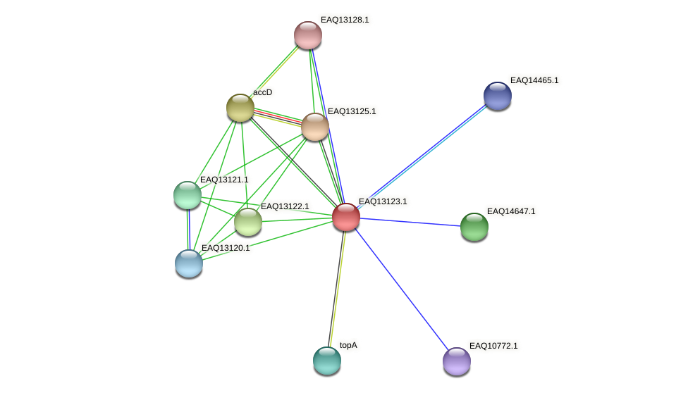 RB2654_11513 protein (Maritimibacter alkaliphilus) - STRING interaction network