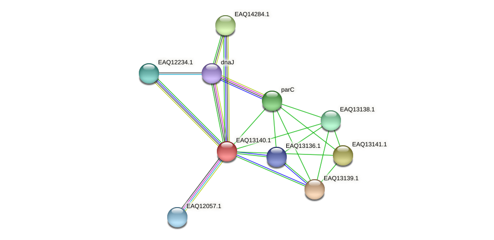RB2654_11598 protein (Maritimibacter alkaliphilus) - STRING interaction network