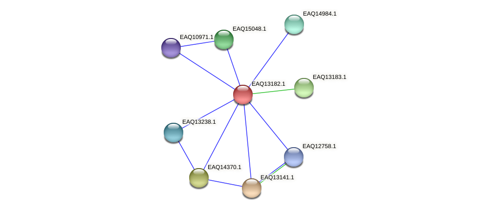 RB2654_11808 protein (Maritimibacter alkaliphilus) - STRING interaction network