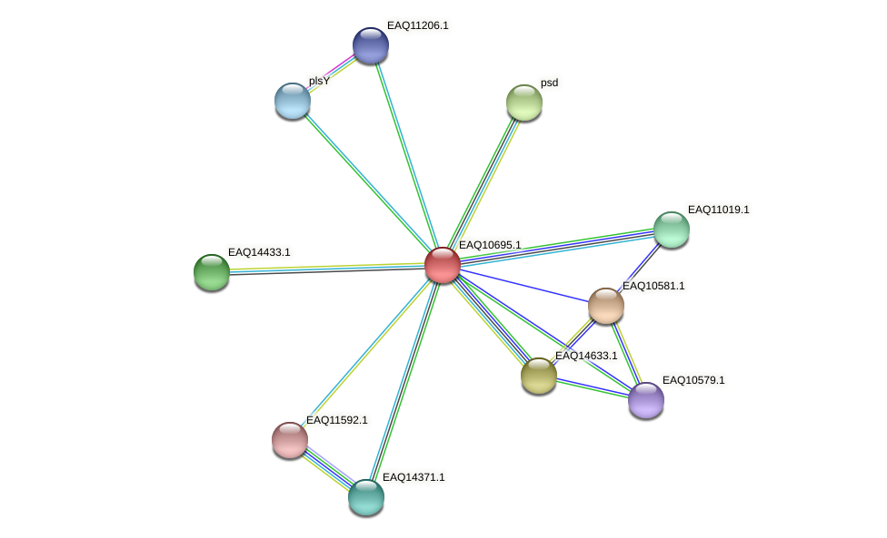 RB2654_11864 protein (Maritimibacter alkaliphilus) - STRING interaction network