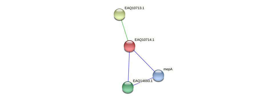 RB2654_11959 protein (Maritimibacter alkaliphilus) - STRING interaction network