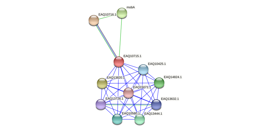 RB2654_11964 protein (Maritimibacter alkaliphilus) - STRING interaction network