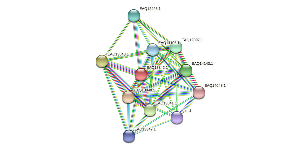 RB2654_12254 protein (Maritimibacter alkaliphilus) - STRING interaction network