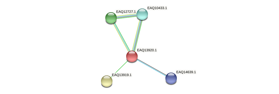 RB2654_12644 protein (Maritimibacter alkaliphilus) - STRING interaction network