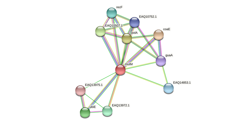fpg protein (Maritimibacter alkaliphilus) - STRING interaction network