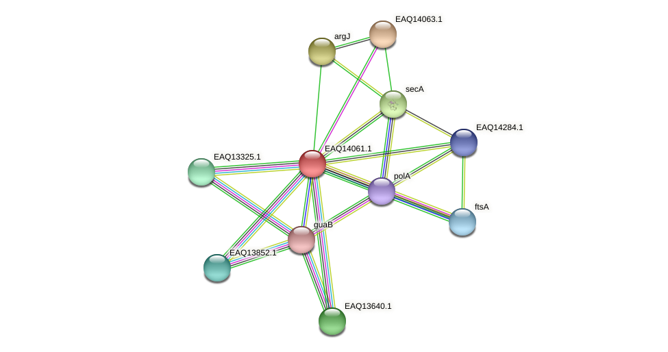 RB2654_13349 protein (Maritimibacter alkaliphilus) - STRING interaction network