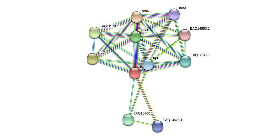 RB2654_13810 protein (Maritimibacter alkaliphilus) - STRING interaction network