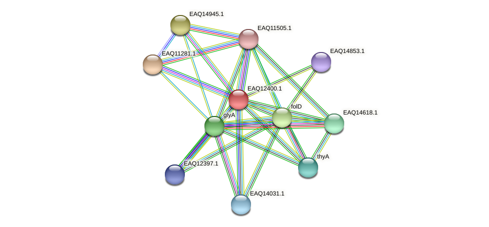 RB2654_13980 protein (Maritimibacter alkaliphilus) - STRING interaction network