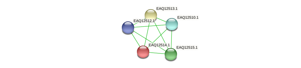 RB2654_14550 protein (Maritimibacter alkaliphilus) - STRING interaction network
