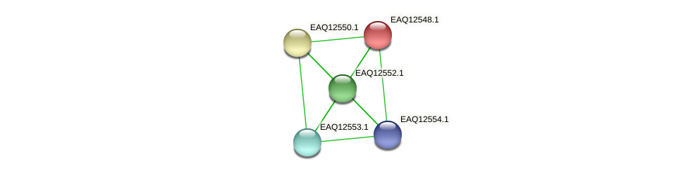 RB2654_14720 protein (Maritimibacter alkaliphilus) - STRING interaction network