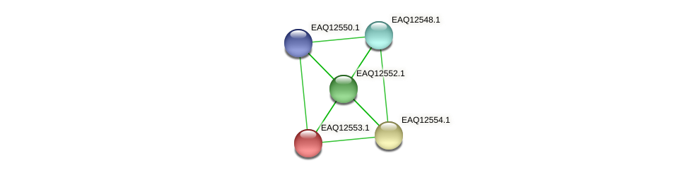 RB2654_14745 protein (Maritimibacter alkaliphilus) - STRING interaction network