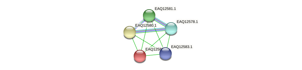 RB2654_14890 protein (Maritimibacter alkaliphilus) - STRING interaction network