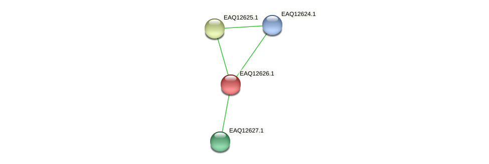 RB2654_15110 protein (Maritimibacter alkaliphilus) - STRING interaction network