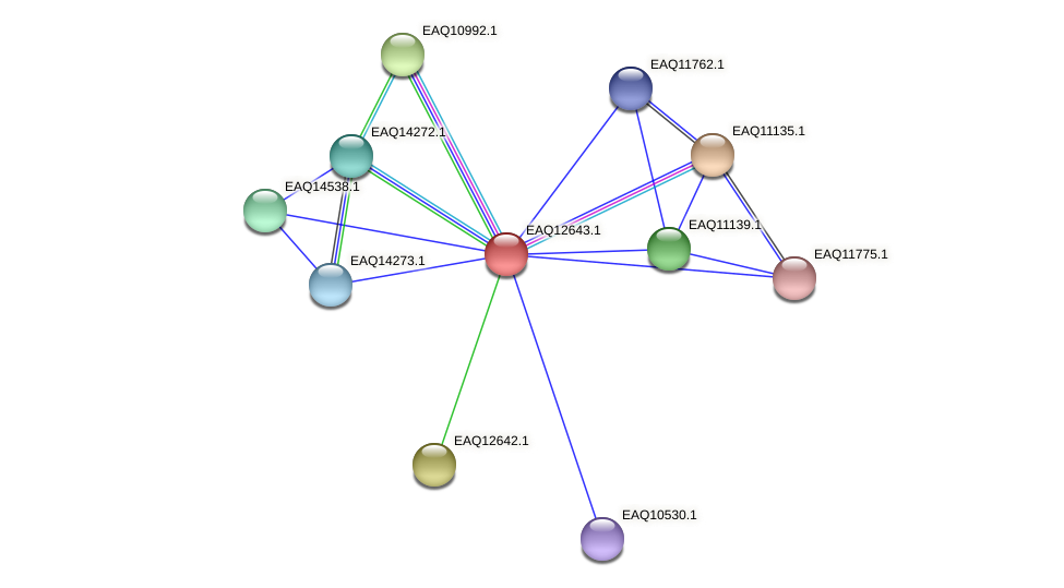 RB2654_15195 protein (Maritimibacter alkaliphilus) - STRING interaction network