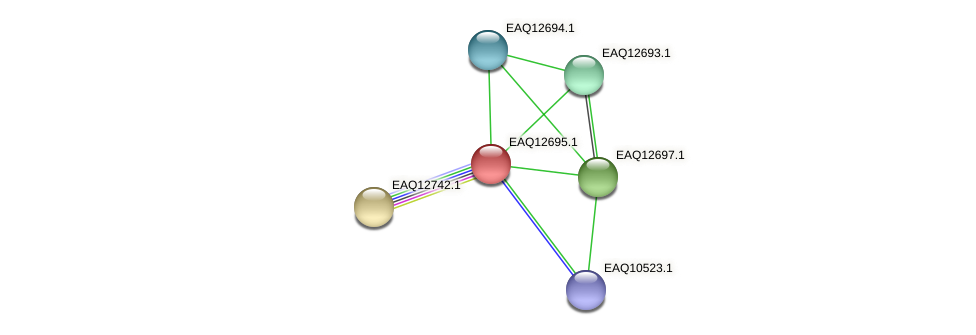 RB2654_15455 protein (Maritimibacter alkaliphilus) - STRING interaction network