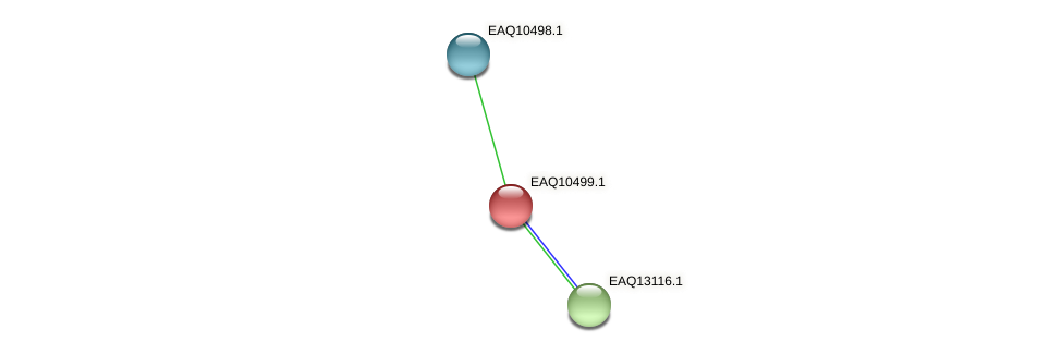RB2654_15489 protein (Maritimibacter alkaliphilus) - STRING interaction network