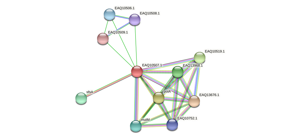 RB2654_15529 protein (Maritimibacter alkaliphilus) - STRING interaction network