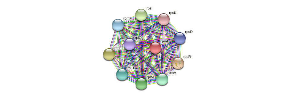 rpmI protein (Maritimibacter alkaliphilus) - STRING interaction network