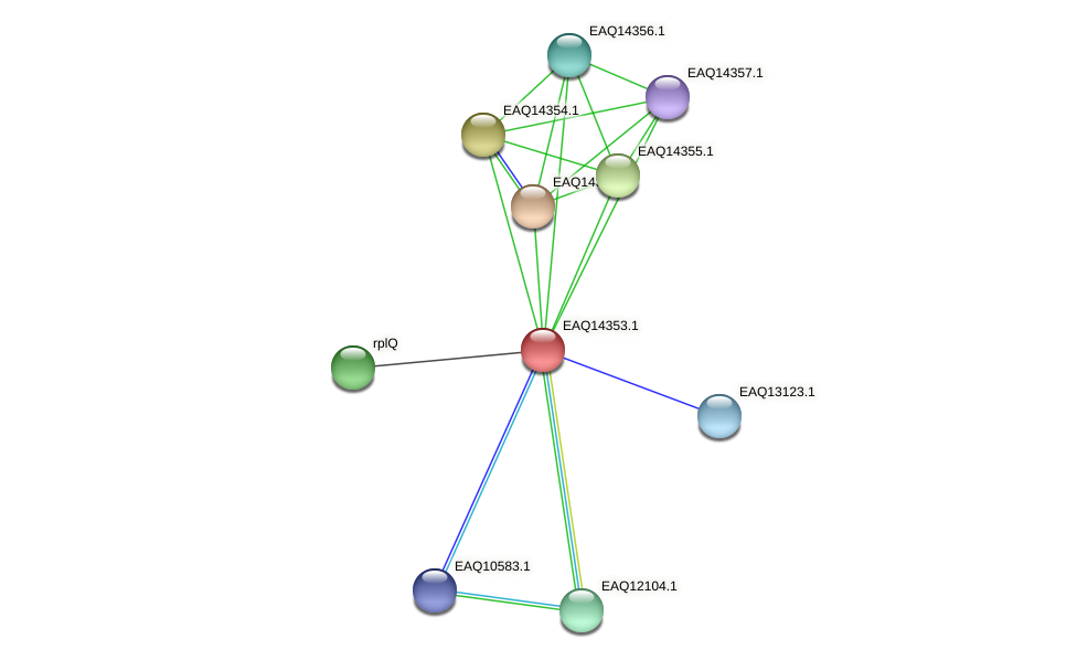 RB2654_16826 protein (Maritimibacter alkaliphilus) - STRING interaction network