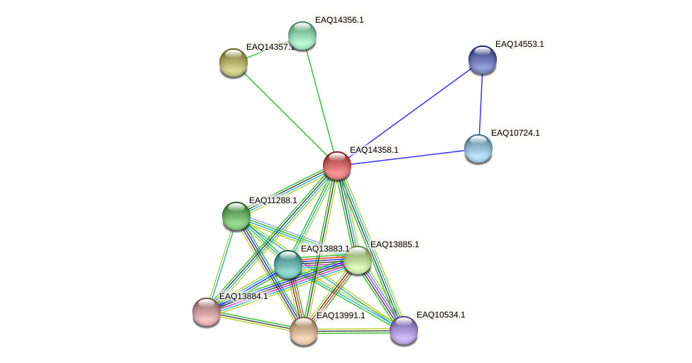 RB2654_16851 protein (Maritimibacter alkaliphilus) - STRING interaction network