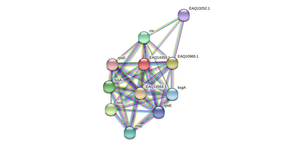 RB2654_16856 protein (Maritimibacter alkaliphilus) - STRING interaction network