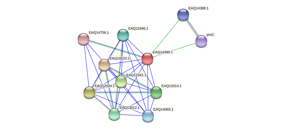 RB2654_17011 protein (Maritimibacter alkaliphilus) - STRING interaction network