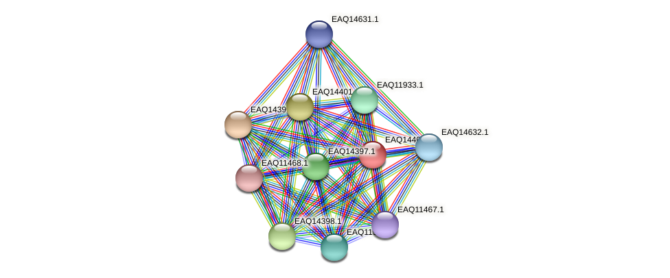 RB2654_17061 protein (Maritimibacter alkaliphilus) - STRING interaction network
