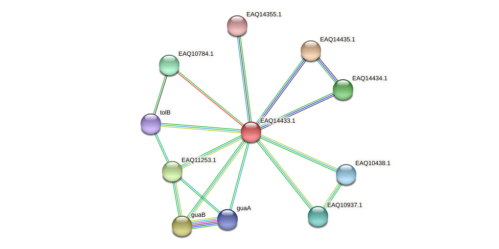 RB2654_17226 protein (Maritimibacter alkaliphilus) - STRING interaction network