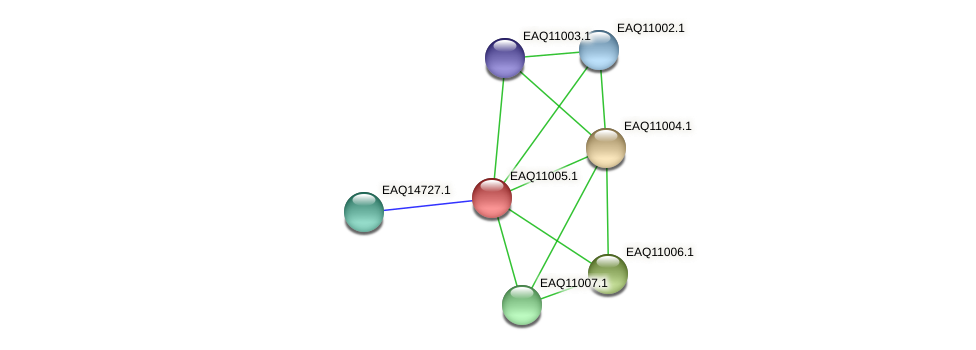 RB2654_18086 protein (Maritimibacter alkaliphilus) - STRING interaction network