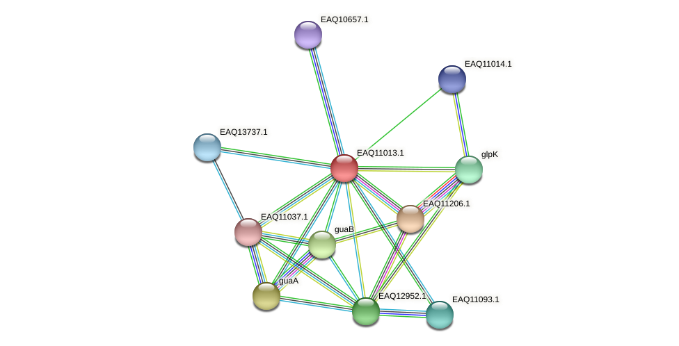 RB2654_18126 protein (Maritimibacter alkaliphilus) - STRING interaction network