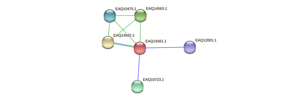 RB2654_18298 protein (Maritimibacter alkaliphilus) - STRING interaction network